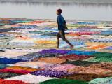 A Dhobiwala (Laundryman) Walking Among Washing on Banks of Yamuna River Photographie par Diana Mayfield