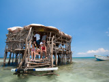 Pelican Bar Photographic Print by Greg Johnston