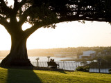 Late Afternoon on Lawn Overlooking Sydney Harbour at Sydney Observatory Fotografisk tryk af Greg Elms