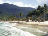 Waves Roll onto Palm Lined Beach Fotografisk tryk af Dan Gair