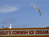 Ice-Cream Van and Seagulls Photographic Print by Doug McKinlay
