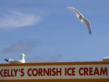 Ice-Cream Van and Seagulls Photographic Print by Doug McKinlay
