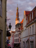 Old Town with Town Hall Tower Photographic Print by Frank Wing