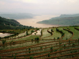 Terraced Rice Fields in Fuling-Chongqing Photographic Print by Keren Su