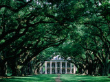 Oak Alley Plantation in Mississippi River Valley Fotografisk tryk af John Elk III