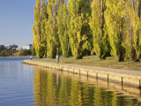 Cyclist and Autumn Poplar Trees in Lennox Gardens Reflected in Lake Burley Griffin Photographic Print by David Wall