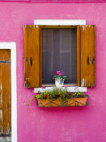Pot Plant and Vividly Painted Facade, Burano Photographic Print by Diana Mayfield