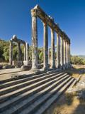 Zeus Temple of Euromos Photographic Print by Izzet Keribar