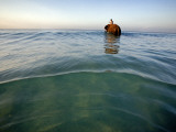 Elephant &#39;Rajes&#39; Wading into Sea with His Mahout on Back Photographic Print by Johnny Haglund