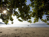 Sunrise Through Leaves at Beach of Charlies Eek Island Photographic Print by Johnny Haglund