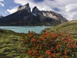 Lago Nordenskjold and Cuernos Massif, Andes Fotografisk tryk af John Elk III