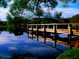 Small Jetty at Lake Daylesford Fotografie-Druck von Glenn Van Der Knijff