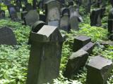 New Jewish Cemetery, Ul Miodowa 55, Kazimierz Photographic Print by Krzysztof Dydynski