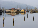 Village Flooded During the Tsunami in 2004, Where the Water Never Went Away Photographic Print by Johnny Haglund