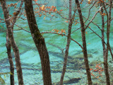 Trees by Colourful Calcium Ponds, Nine Village Valley (Jiuzhaigou) Photographic Print by Keren Su