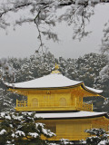Kinkakuji Temple, the Golden Pavilion Covered in Snow Photographic Print by Frank Carter