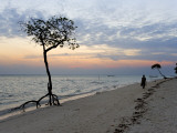Beach on East Side of Havelock Island, Near Barefoot Scuba Photographic Print by Johnny Haglund