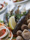 Grilled Sardines with Potatoes and Salad at Restaurant Photographic Print by Holger Leue