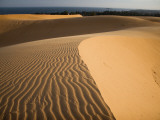 Sand Dunes Photographic Print by Micah Wright