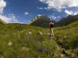 Hiker Treks Uphill Towards Mt Chaukhi Reproduction photographique par Mark Daffey