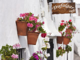 Flowerboxes on Walls Photographic Print by Karl Blackwell