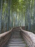 Escalera a través de bosque de bambú  sobre el templo Adashino Nembutsu-Ji Lámina fotográfica por Brent Winebrenner