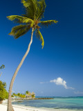 Beach at Punta Cana Photographic Print by Veronica Garbutt