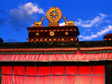 Dharma Wheel and Symbolic Deer on Roof of Jokhang Temple Photographic Print by Anthony Plummer