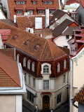Old Town Rooftops from Toompea (Castle Hill) Photographic Print by Manfred Hofer