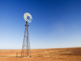 Windmill Near Arkaringa Photographic Print by David Wall