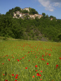 Poppies in Wheat Field with Caprese Michelangelo in Background Photographic Print by Ruth Eastham & Max Paoli