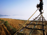Ethnic Red Dao Woman on Perch Pours Rice, Enlisting Wind to Blow Away Loose Rice Husks Photographic Print by Stu Smucker