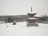 Shrine Covered in Snow Along Chuo National Highway, Near Takikawa Photographic Print by Shayne Hill