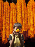 Little Girl Showing Off Marigold That She Stole from Beautiful Strings of Flowers Photographic Print by April Maciborka