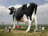World's Largest Holstein Cow Photographic Print by Richard Cummins