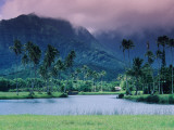 Looking across Tropical Landscape Up to Mt Waialeale from Hanalei Photographic Print by Ann Cecil