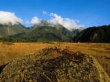Lava Fields at Baru Volcano Photographic Print by Alfredo Maiquez