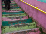Colourful Stairway in Cerro Concepcion Photographic Print by Brent Winebrenner