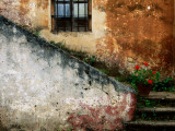 Adobe Stairs with Geraniums Photographic Print by Douglas Steakley