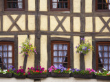 Half-Timbered Facade with Floral Window Boxes in Lyons-La-Foret Photographic Print by Barbara Van Zanten