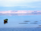 Chott El-Jerid Lake Photographic Print by Christopher Groenhout