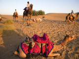 Resting Camels at Dusk in Sam Sand Dunes Near Jaisalmer Photographic Print by Lindsay Brown