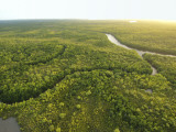 Aerial View of River Near Northern Tip of Cape York Photographic Print by Michael Gebicki