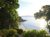Lady Bay Beach, Watson's Bay Photographic Print by Oliver Strewe