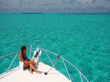 Cruising in Half Moon Caye Park Photographic Print by Uros Ravbar