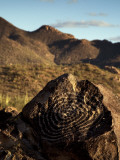 Ancient Petroglyphs Photographic Print by Mark Newman