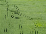 Aerial View of Tractor Patterns in Field Photographic Print by Oliver Strewe