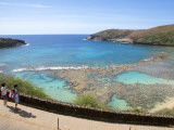 Protected Coral Reef at Hanauma Bay Park Photographic Print by Sabrina Dalbesio