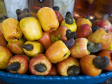 Cashew Fruit Photographic Print by Viviane Ponti