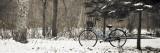 Bike on Snowy Trail in Hokkaido University Forest Fotografisk tryk af Shayne Hill